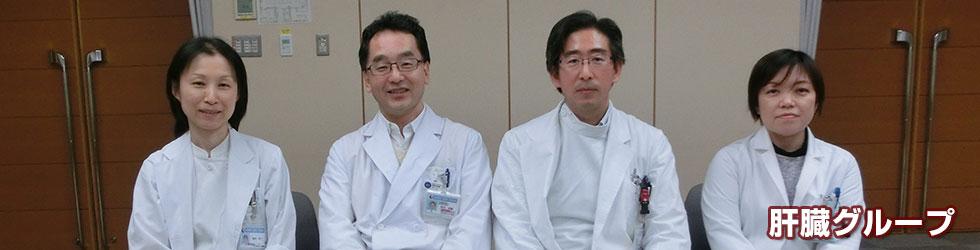 肝臓グループ